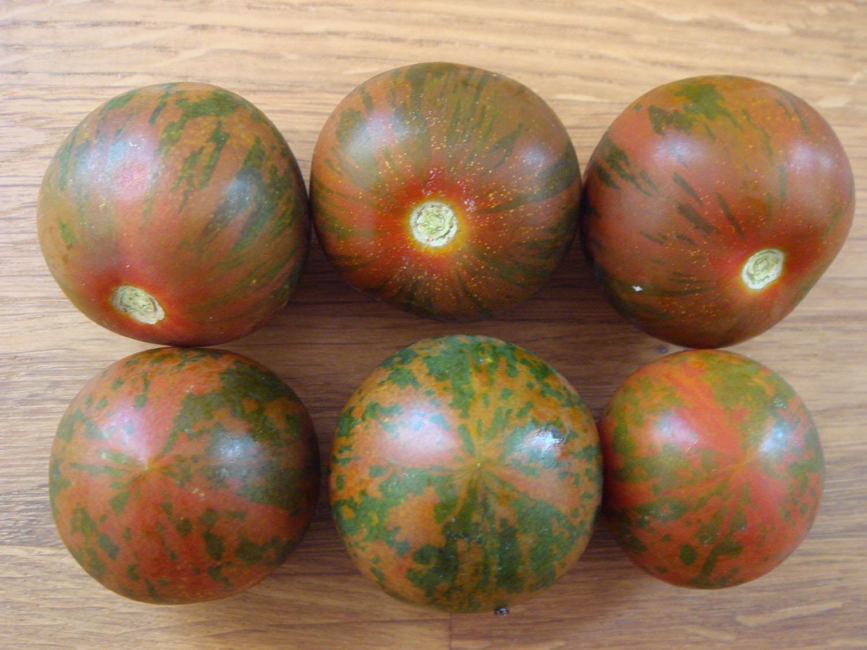 weinberg tomate aus italien schwarz gestreift. Black Bedroom Furniture Sets. Home Design Ideas